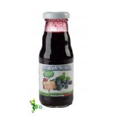 Succhi di Frutta Mirtillo Bio  200ml