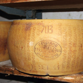 Whole form Parmigiano Reggiano