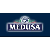 Logo Medusa