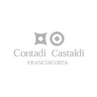 Logo Contadi Castaldi