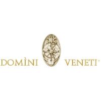 Logo Domini Veneti