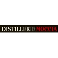 Logo Moccia