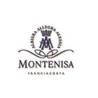 Logo Montenisa