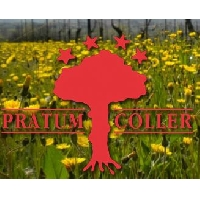 Logo Pratum Coller By Andrea Pirlo