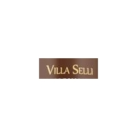 Logo Villa Selli