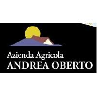 Logo Andrea Oberto