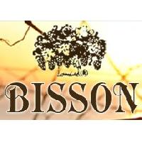Logo Bisson