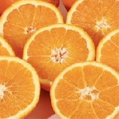Siciliaanse pers sinaasappelen/ Juice oranges  of Sicily Ribera (Arance di Ribera Dop)