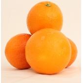 Siciliaanse sinaasappelen Sicilian Ribera
