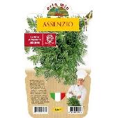AFWEZIGHEID - Plant in een pot 14 cm - Orto mio