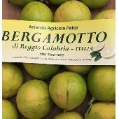 bergamot of calabria